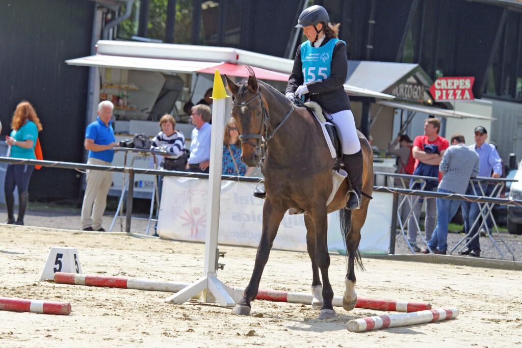 Reiterin auf einem braunen Pferd