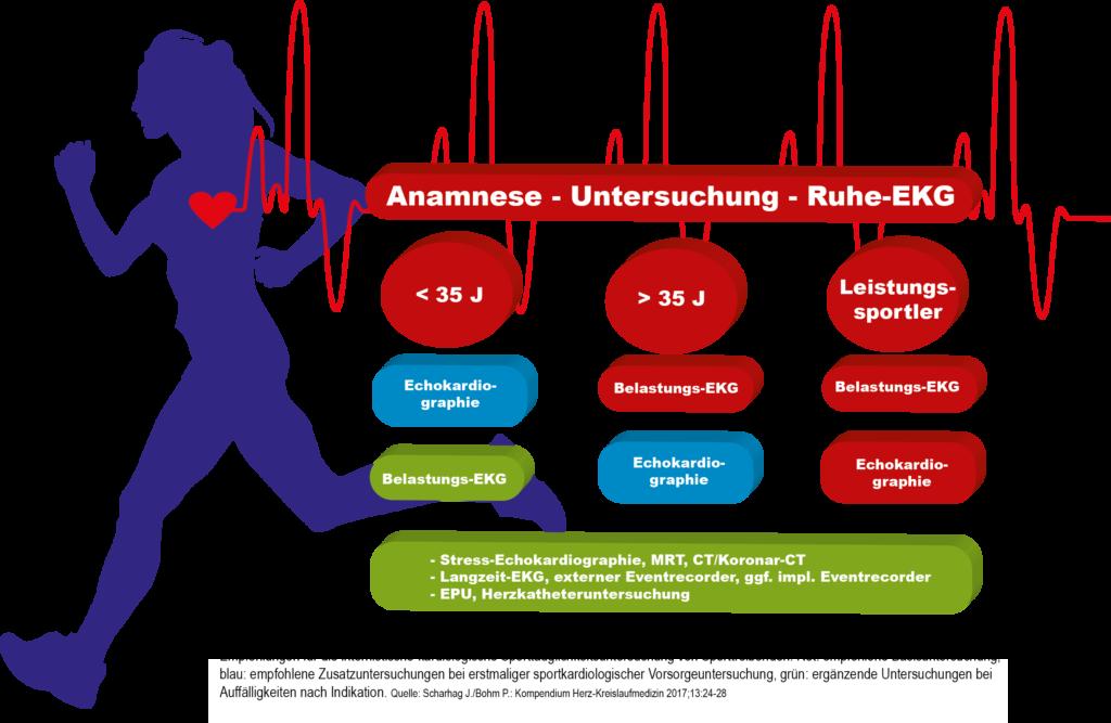 Infografik Sporttauglichkeitsuntersuchung
