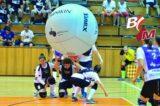 Riesenspaß mit dem Riesenball